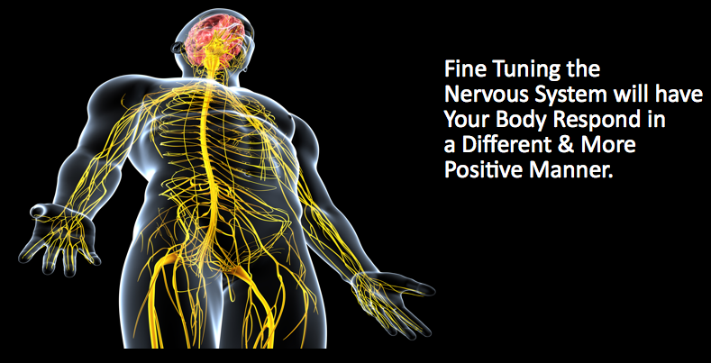 Fine Tuning the Nervous System