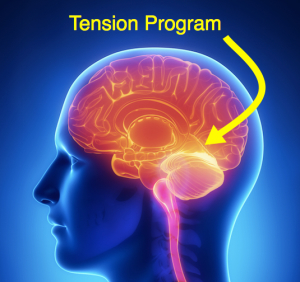 Tension Program