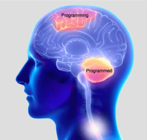 brain-programming-and-programmed
