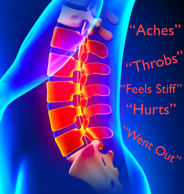 What we say about our back