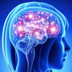 brain based movements