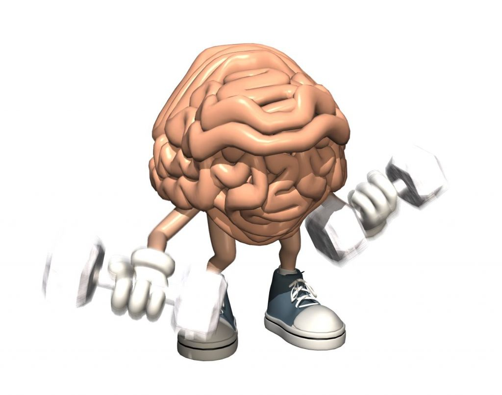 The One Big Muscle, The Brain Sends a Message so the Muscles can Contract