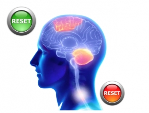Cortical reset vs Spina cord reset